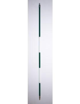 Green/White Stripe Stick